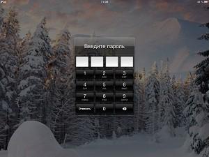iPadforgottpass