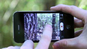 Не фокусирует задняя камера iPhone X