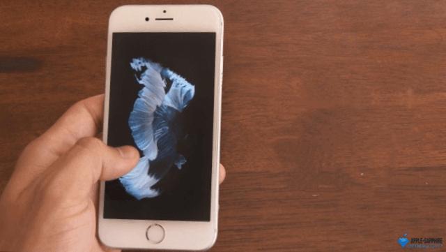 Не работает сенсор/тачскрин iPhone 8