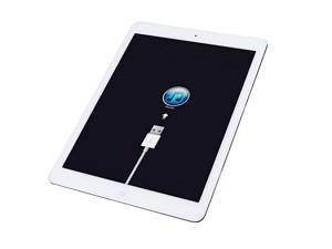 84_proshivka-iPad
